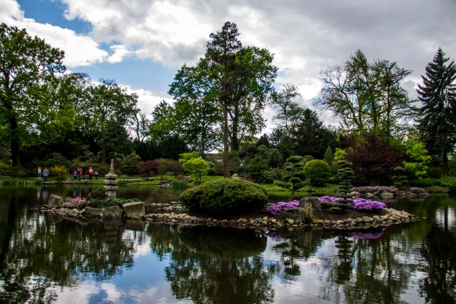 Vista de la isla central del jardín